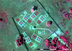 Enhancement of ecological field experimental research by means of UAV multispectral sensing