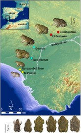 Dwarfism in continental populations of natterjack toads in the absence of genetic isolation